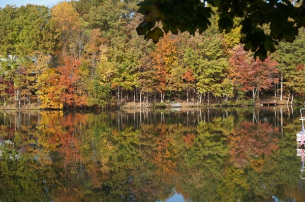 Fall - Lake Thoreau