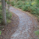 Reston Association Path