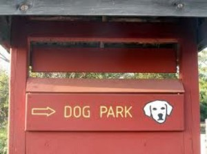 Dog Park at Baron Cameron Park