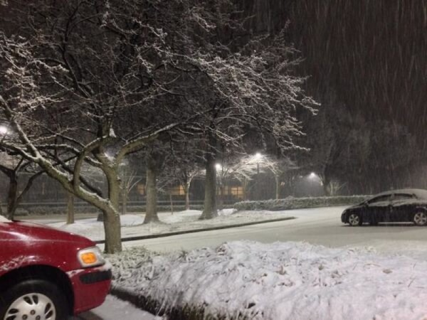 Snow in Reston Jan. 2/Credit: Anthony Miller via Twitter