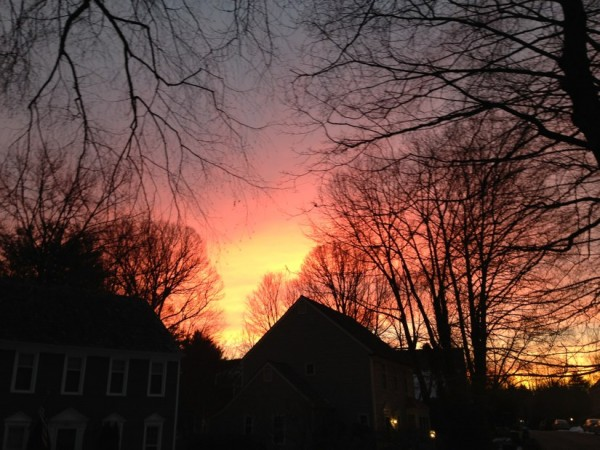 Reston sunrise, Jan. 31, 2014