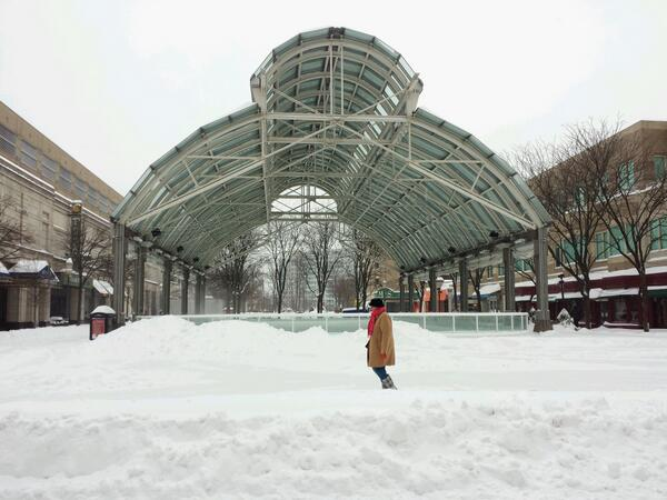 Snowy morning at Reston Town Center/Credit: Ed Schudel via Twitter