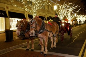 Horse-drawn carriage at Reston Town Center/Credit: Reston Town Center