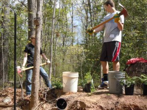 Planting trees at Walker Nature Center in Reston/file photo
