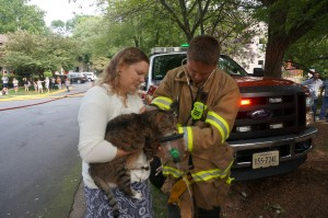 Marcus the cat gets some care from firefighters