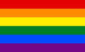 Rainbow Flag/Credit Wikipedia
