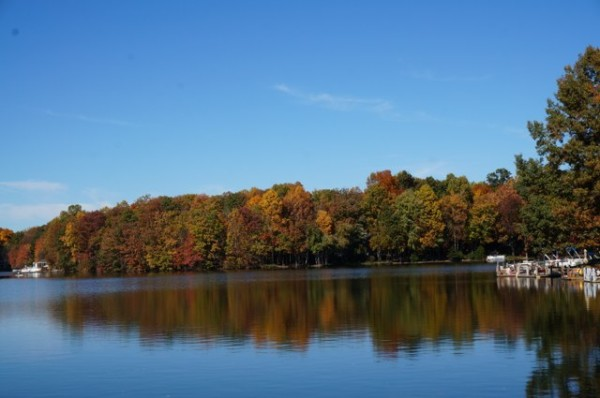Fall on Lake Thoreau