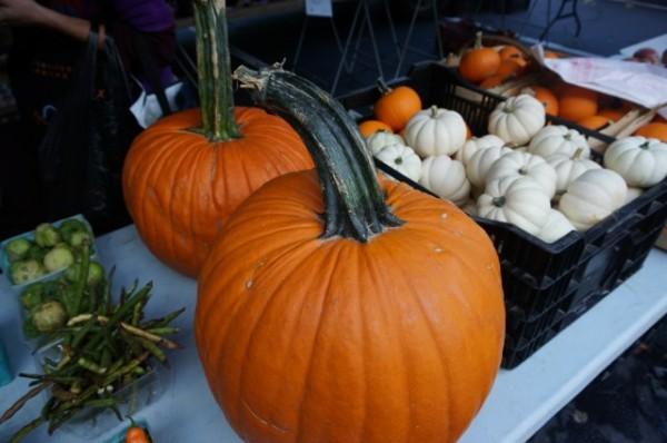 Fall at Smartmarkets Reston