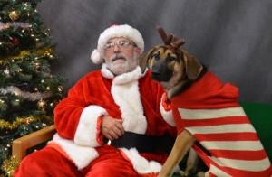 Pets visiting Santa/Credit: Virginia Tech, Virginia-Maryland Regional College of Veterinary Medicine