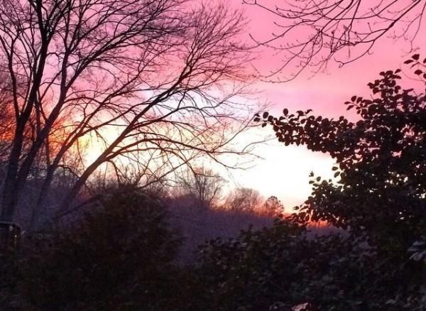 Sunset in Reston Feb. 6/Credit: Joy Every