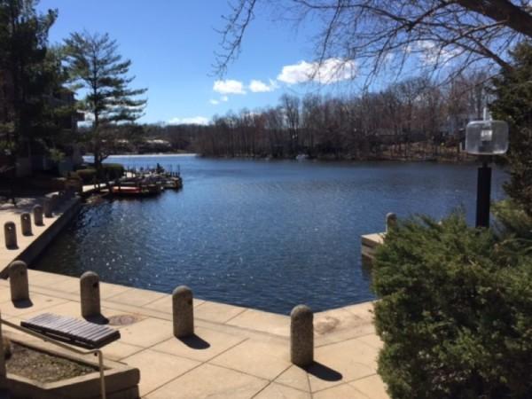Dock at South Lakes Village Center