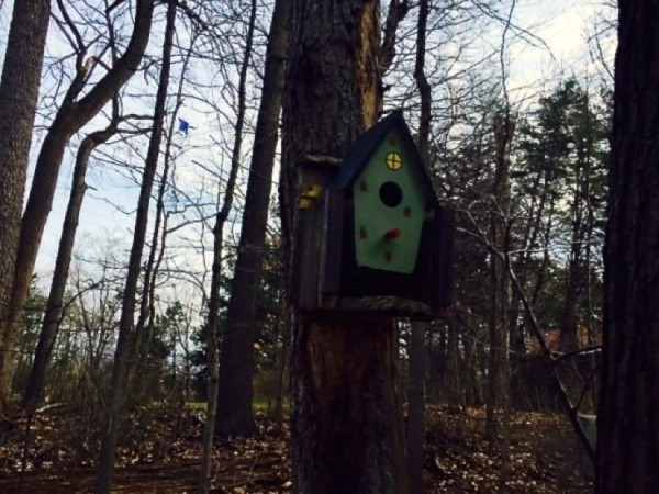 Birdhouse on Reston bike path