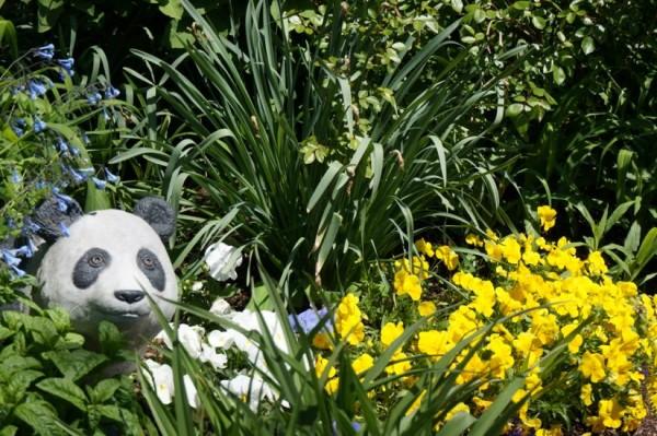 Garden in Reston