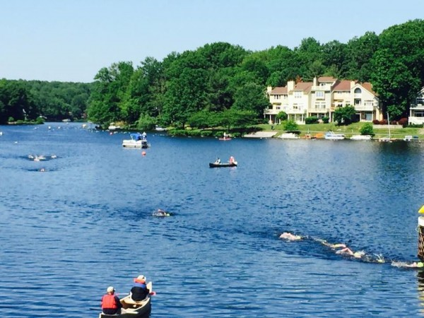 2015 Jim McDonnell Lake Swim