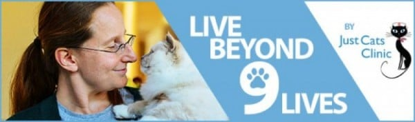 Beyond Nine Lives