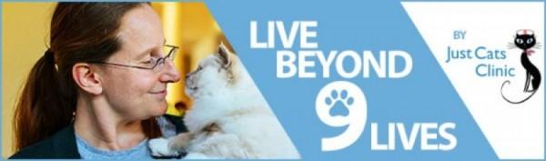 Beyond Nine Lives