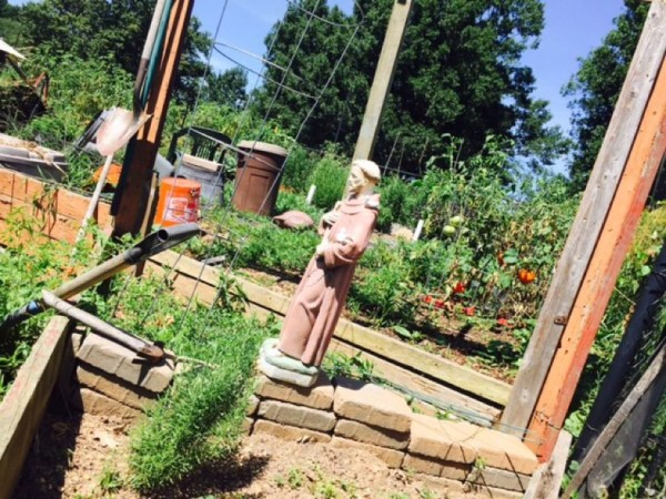 Reston Community Garden