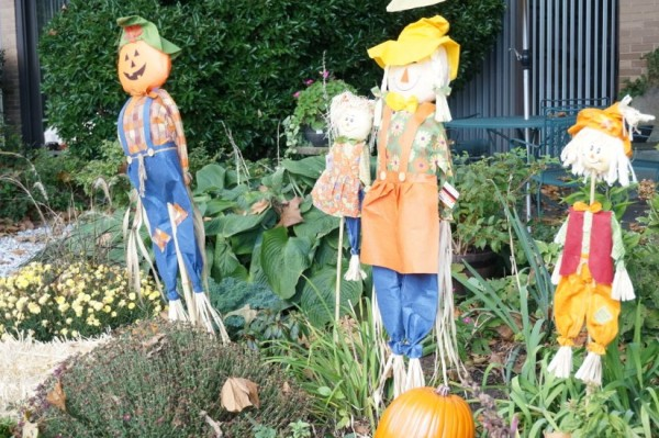 Fall decorations at Lake Anne
