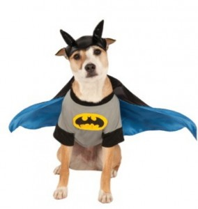 Dog Batman costume/Credit: Halloweencostumes.com