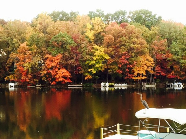 Fall color at Lake Anne/Credit: John Menick