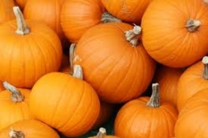 Pumpkins/Wikipedia Commons