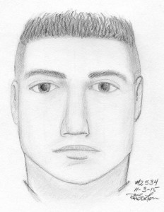 Sketch of suspect in stabbing at Clyde's/FCPD