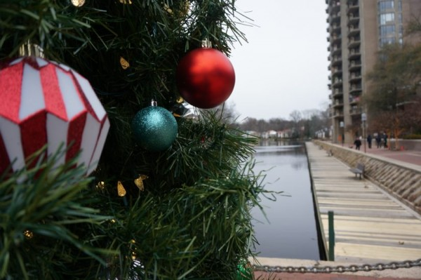 Christmas tree at Lake Anne