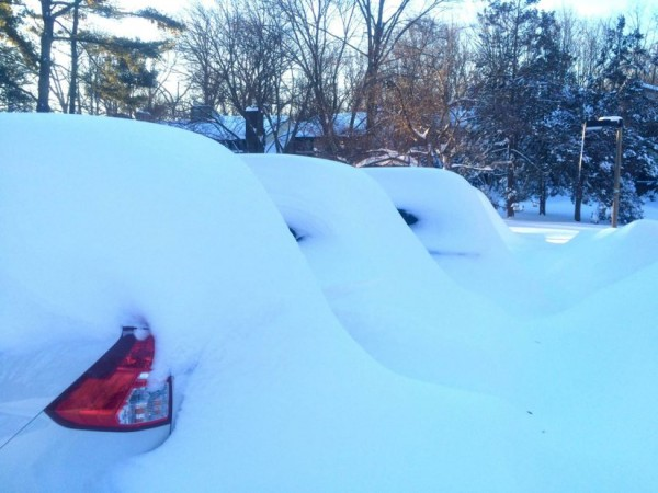 Snowed-in cars in Reston on Jan. 24, 2016/Credit: Annika Bohn
