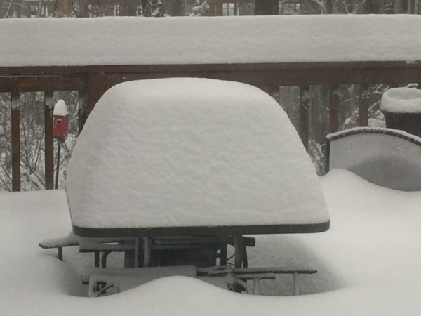 Snowfall Saturday 8 a.m./Kurt Rose