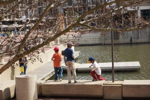 Lake Anne Plaza spring