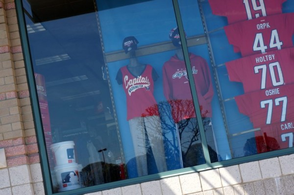 modells window1