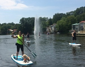 Paddleboarding on Lake Anne/Credit: Surf Reston