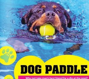 RA Dog Paddle
