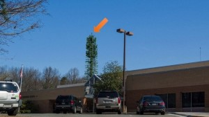 Proposed cell tower (tree) at Crossfield ES/Courtesy Verizon
