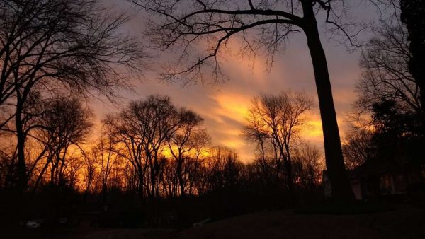 Tuesday morning Sunrise (photo courtesy @MrErrett)