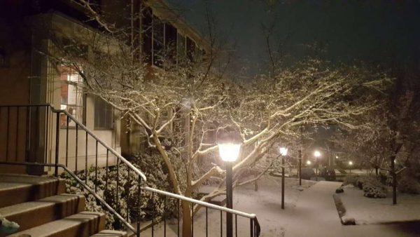 Reston snow/@RenaeDitmer on Twitter