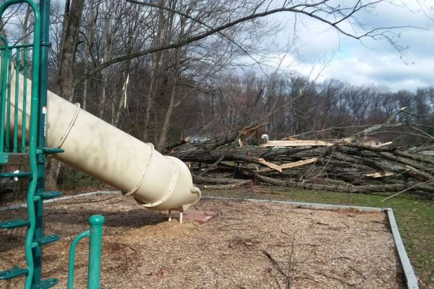 Trees also fell near a playground at Bordeaux Recreation Area (Photo by Gary Smith)
